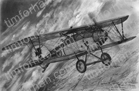 d-111-albatros-aircraft-airplane-pencil-drawing-ac030
