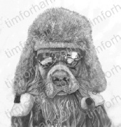 duster-driver-dogs-pencil-drawing-d011