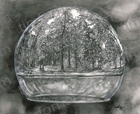 global-view-forest-in-globe-landscape-pencil-drawing-l020