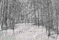 ice-stream-frozen-stream-in-forest-landscape-pencil-drawing-l022
